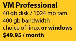 VM Professional: 40gb disk/1024mb ram/400gb bandwidth for $49.95/month